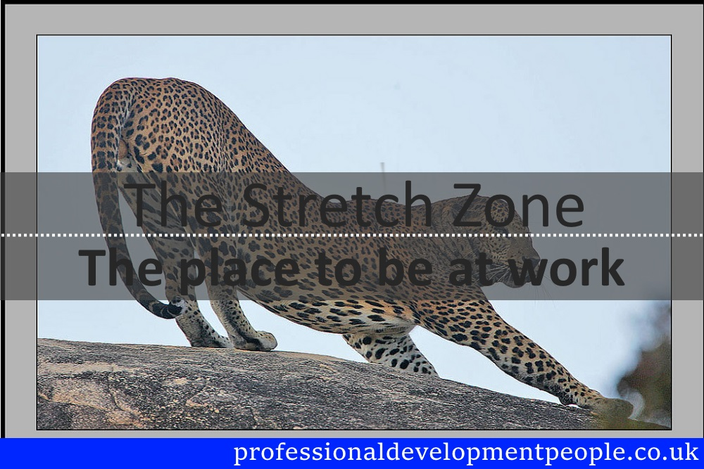 the stretch zone